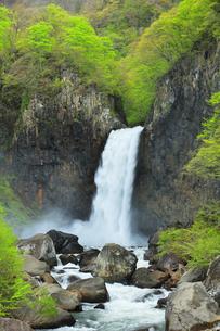 苗名滝と新緑の写真素材 [FYI04867560]
