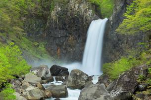 苗名滝と新緑の写真素材 [FYI04867562]