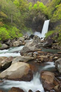苗名滝と新緑の写真素材 [FYI04867564]