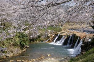 布橋十二ヶ滝の写真素材 [FYI04867751]