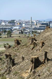 宅地開発のために伐採した木の切り株と街並みの写真素材 [FYI04867785]