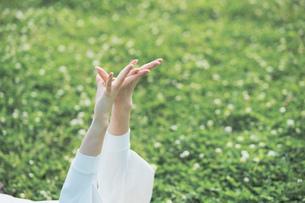 芝生でくつろぐ女性の写真素材 [FYI04867802]