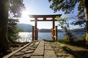 湖上に浮かぶ箱根神社の平和の鳥居の写真素材 [FYI04868296]