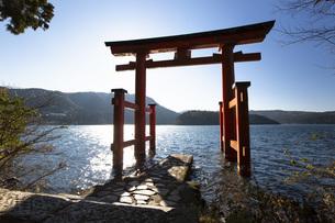 湖上に浮かぶ箱根神社の平和の鳥居の写真素材 [FYI04868298]