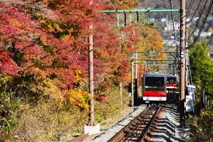 斜面を登る箱根登山鉄道のケーブルカーの写真素材 [FYI04868309]