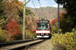線路を走る箱根登山鉄道と紅葉の写真素材 [FYI04868315]