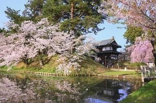 弘前公園の追手門と桜に花筏の写真素材 [FYI04868388]
