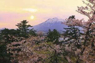 弘前公園より望む夕日と冠雪の岩木山に桜の写真素材 [FYI04868462]