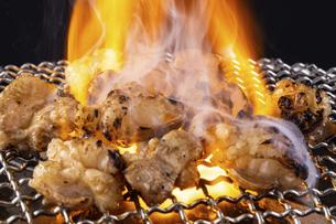 焼肉店でホルモン焼を食べるの写真素材 [FYI04868942]