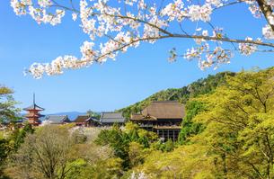 関西の風景 京都市 春の清水寺景観の写真素材 [FYI04868994]