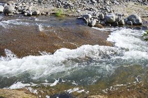 水のキレイな川の写真素材 [FYI04869099]
