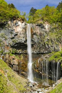 新緑と華厳の滝 栃木県の写真素材 [FYI04869133]