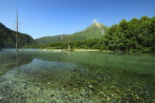 上高地 夏の焼岳と梓川 長野県の写真素材 [FYI04869138]