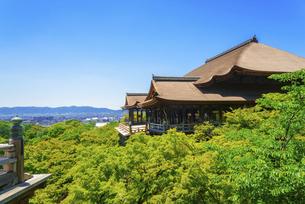 関西の風景 京都市 新緑の清水寺本堂の写真素材 [FYI04869185]