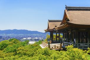 関西の風景 京都市 新緑の清水寺と京都の町並みの写真素材 [FYI04869186]