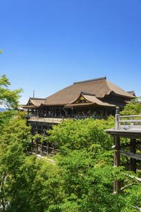 関西の風景 京都市 新緑の清水寺本堂の写真素材 [FYI04869190]
