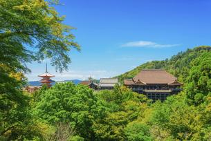 関西の風景 京都市 新緑の清水寺景観の写真素材 [FYI04869191]