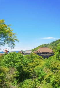 関西の風景 京都市 新緑の清水寺景観の写真素材 [FYI04869195]