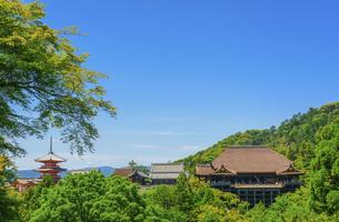 関西の風景 京都市 新緑の清水寺景観の写真素材 [FYI04869197]