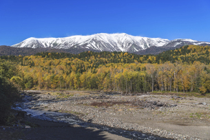 秋と冬の二重奏~大雪山と石狩川~の写真素材 [FYI04869498]