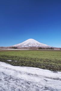 羊蹄山と残雪の農地の写真素材 [FYI04869510]