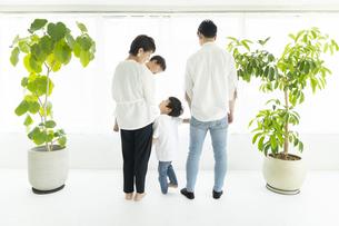 窓際に並んで立つ家族の背中の写真素材 [FYI04869794]