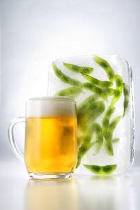 ビールと枝豆の写真素材 [FYI04870103]