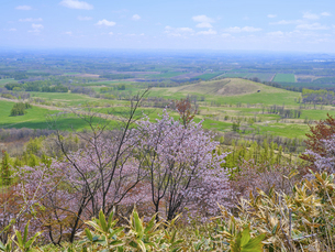 円山展望台から見た風景 の写真素材 [FYI04870133]