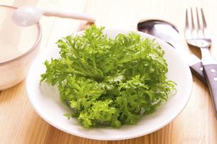 わさび菜のサラダの写真素材 [FYI04870499]