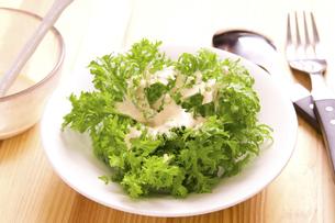 わさび菜のサラダの写真素材 [FYI04870501]