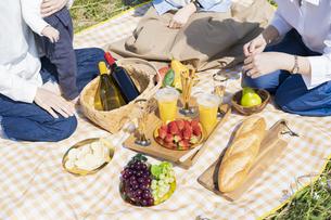 ピクニックを楽しむ人たちの写真素材 [FYI04870945]