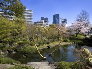 六本木ヒルズと毛利庭園 東京都の写真素材 [FYI04870961]
