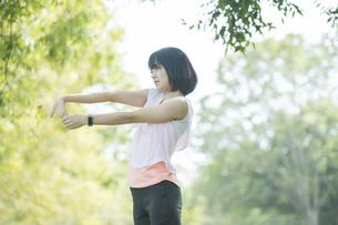 緑あふれる公園でストレッチをする若い女性の写真素材 [FYI04870986]