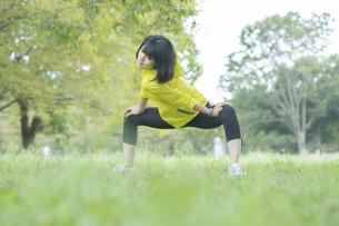 緑あふれる公園でストレッチをする若い女性の写真素材 [FYI04871024]