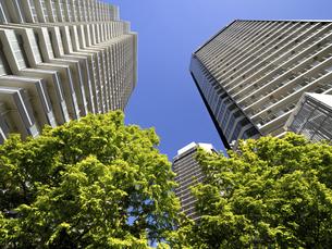 新緑の高層マンション街の写真素材 [FYI04871066]