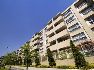 低層階の集合住宅 東京都の写真素材 [FYI04871157]