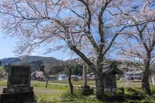 杣山城址の写真素材 [FYI04871427]