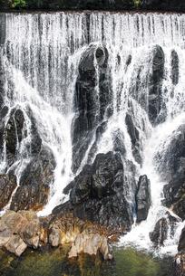 「愛知のナイアガラの滝」とも言われる迫力の長篠堰堤(ながしのえんてい)余水吐(よすいばき)の写真素材 [FYI04872549]