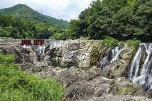 「愛知のナイアガラの滝」とも言われる迫力の長篠堰堤(ながしのえんてい)余水吐(よすいばき)の写真素材 [FYI04872552]