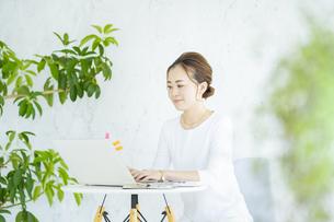 明るい部屋でノートパソコンを操作する女性の写真素材 [FYI04872576]