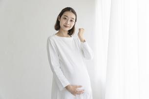 妊婦の写真素材 [FYI04872639]