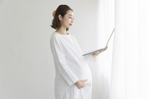 パソコンの画面を見る妊婦の写真素材 [FYI04872642]