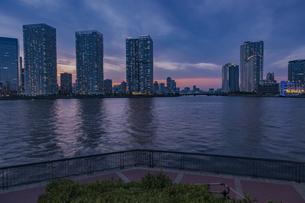 豊洲と晴海のビル群の夕景の写真素材 [FYI04873194]