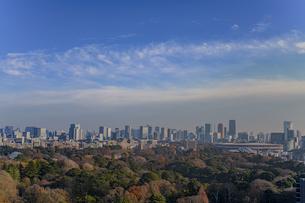 東京の高層ビル群と新国立競技場と青空の写真素材 [FYI04873200]