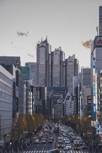 新宿の街並みと高層ビルの写真素材 [FYI04873203]