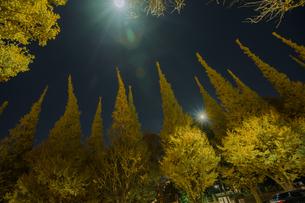 神宮外苑イチョウ並木の夜景の写真素材 [FYI04873210]