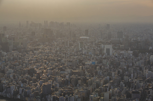 東京スカイツリーから望む東京の街並みと都心のビル群の写真素材 [FYI04873237]