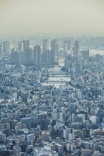 東京スカイツリーから望む都心のビル群と街並みの写真素材 [FYI04873241]