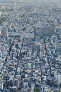 東京スカイツリーから望む錦糸町周辺の街並みの写真素材 [FYI04873244]