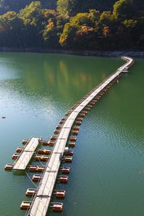 奥多摩湖に浮かぶ麦山浮橋の写真素材 [FYI04873595]